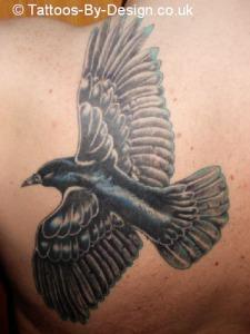 Tribal raven tattoo designs